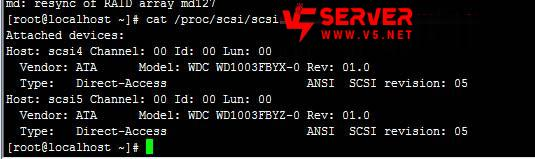 linux-read-disk-raid-1.jpg